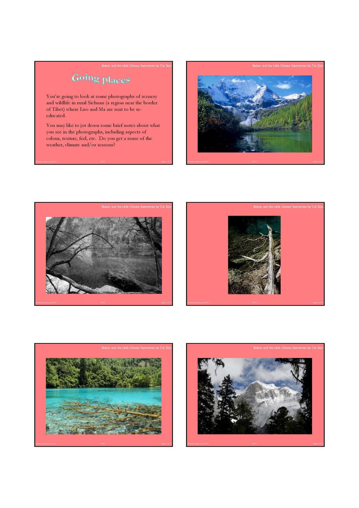 balzac and the little chinese seamstress novel pdf