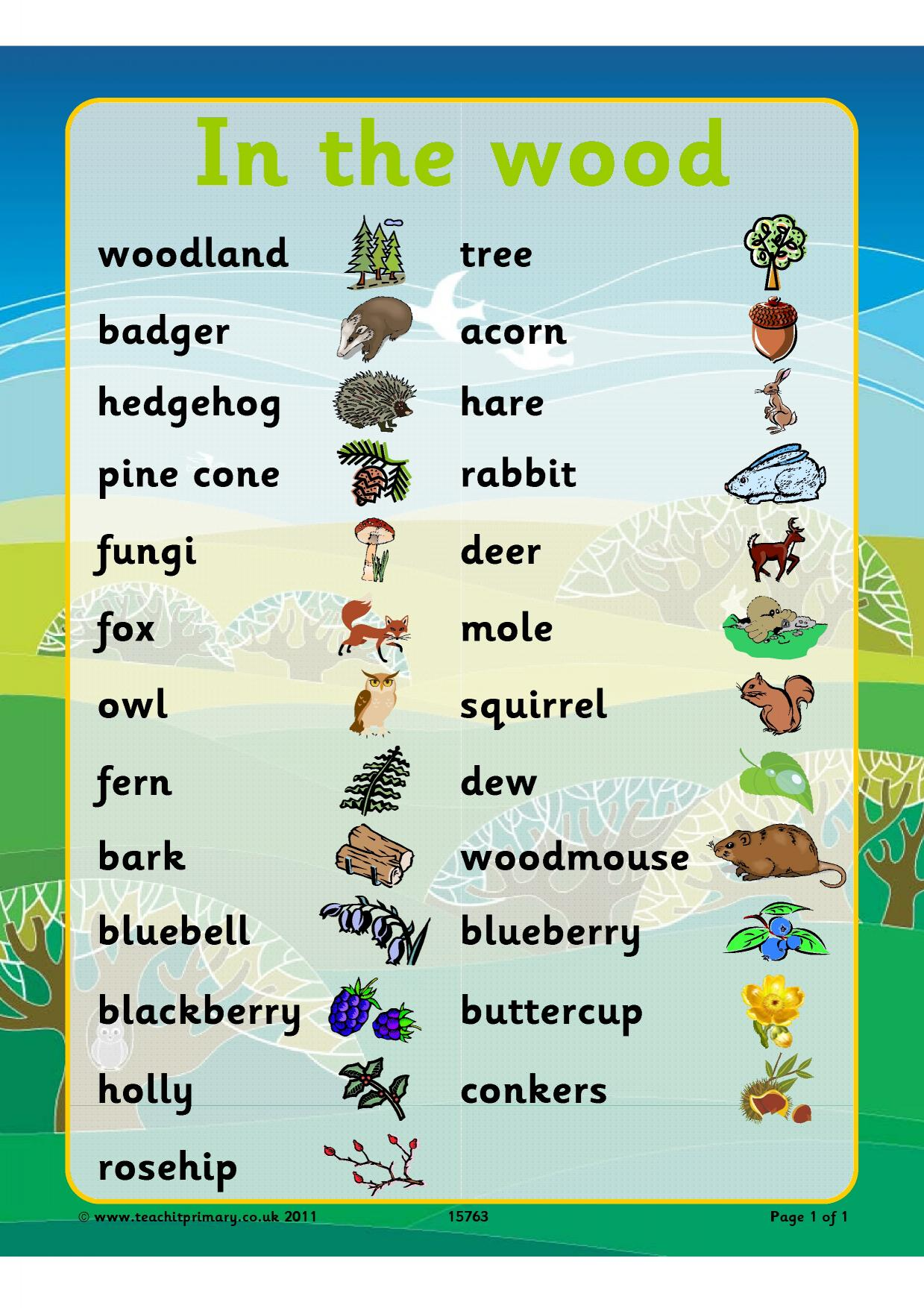 Habitats Life Processes And Living Things Science
