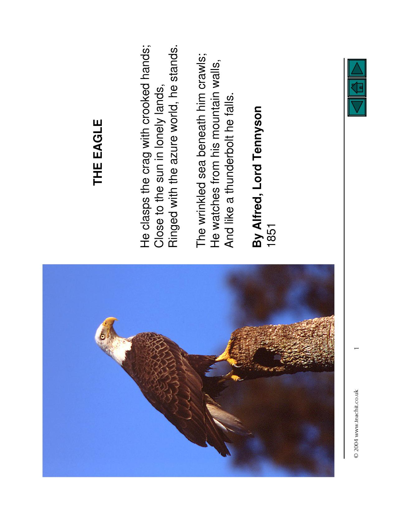 the eagle by alfred lord tennyson