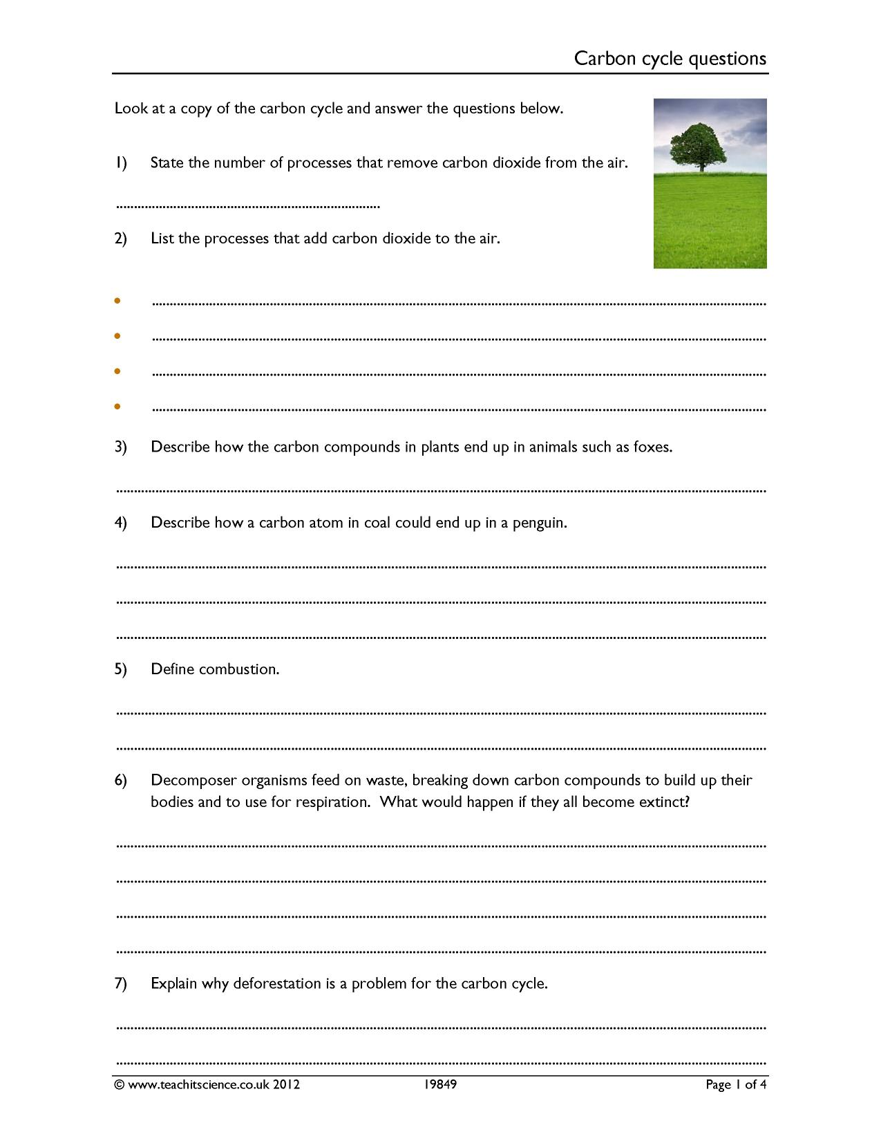 Worksheets Carbon Cycle Worksheet carbon cycle questions energy environment and ecology ks4 resource thumbnail