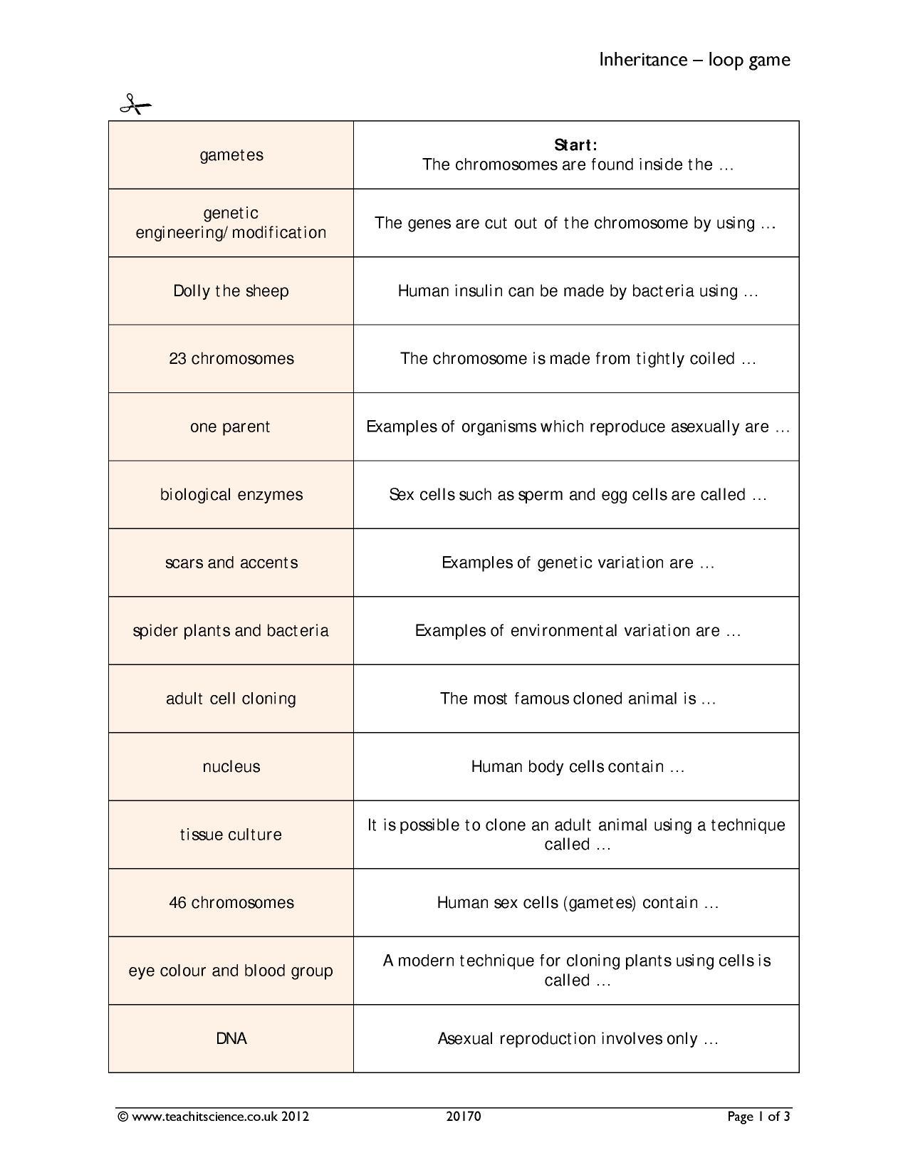 Worksheet Genetic Variation Worksheet Recetasnaturista Worksheet
