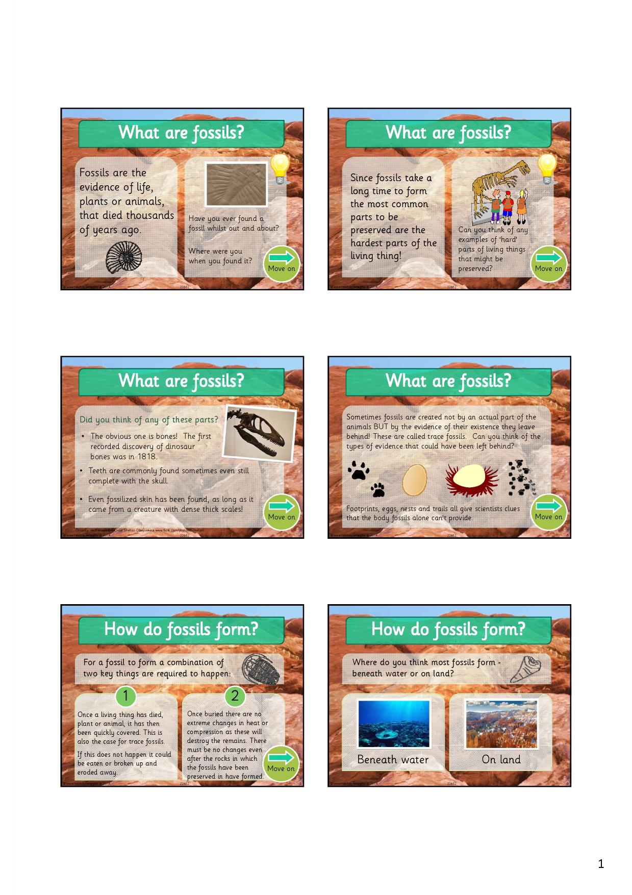 Eyfs ks1 ks2 evolution and adaptation teachit primary 1 preview pooptronica