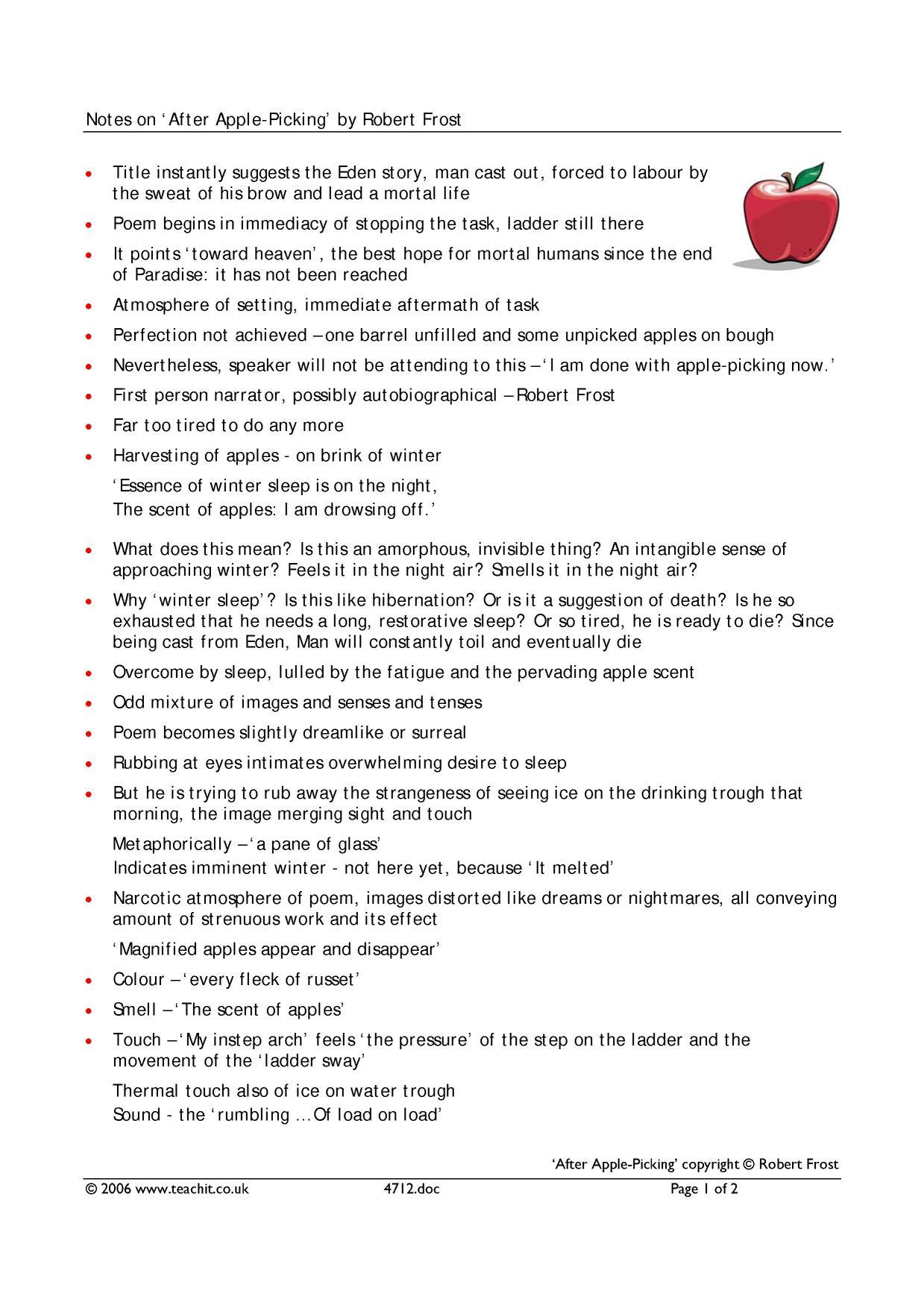 Analytical essay of the kite runner