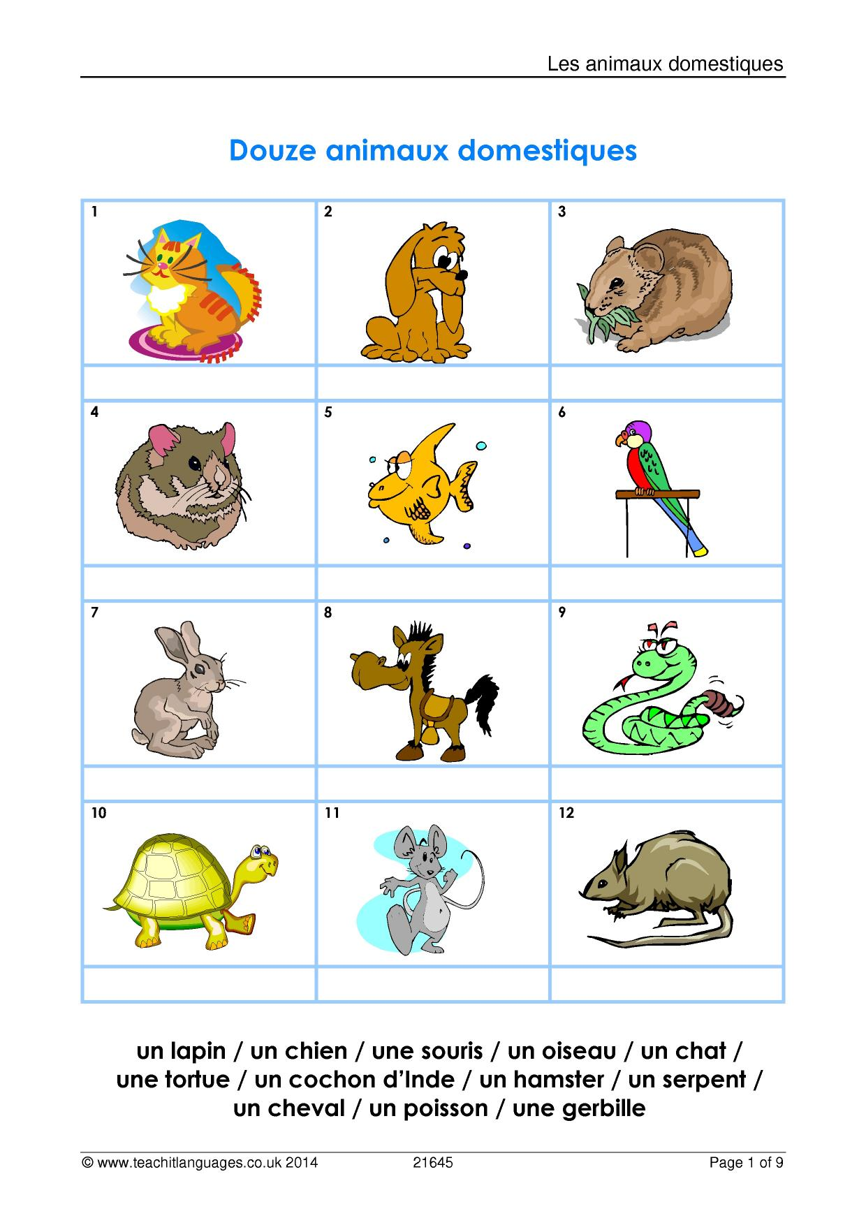 French grammar worksheets free download