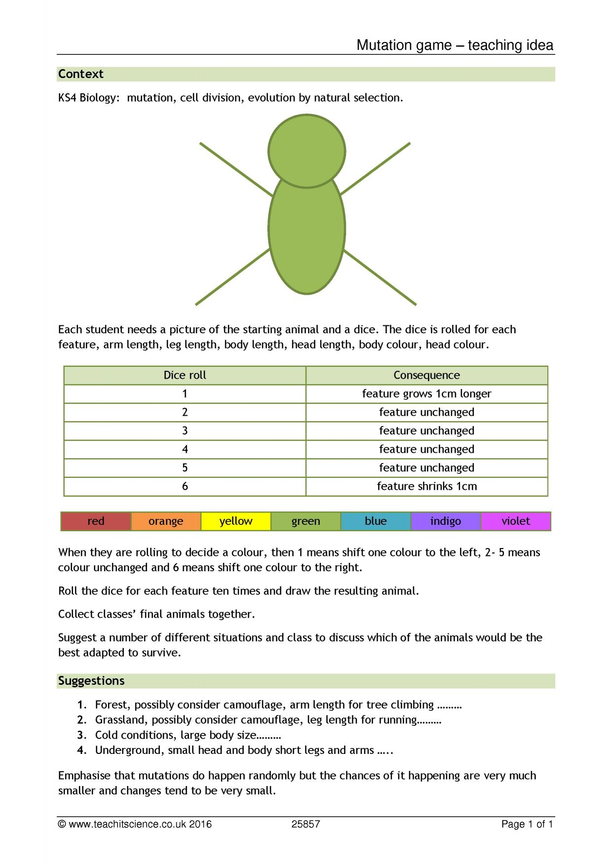 Biology worksheets ks4