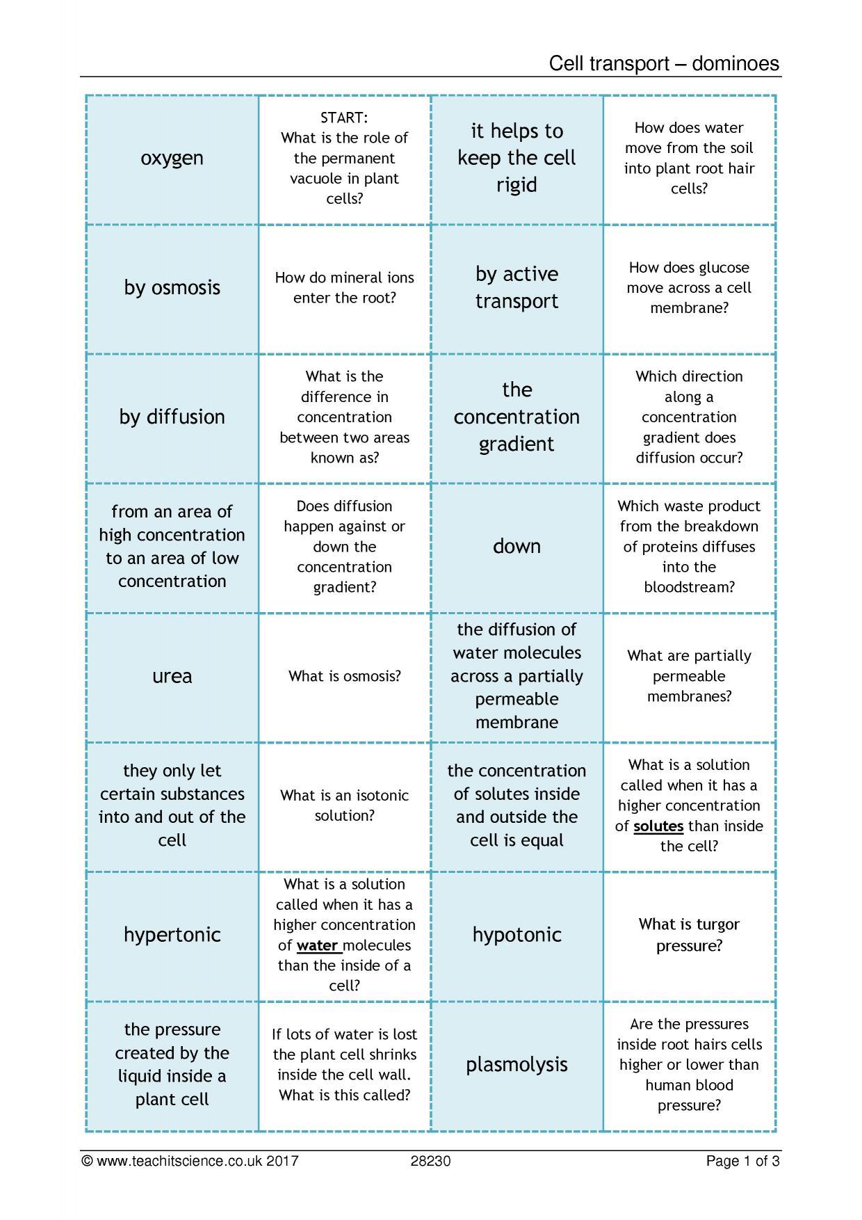 Diffusion worksheet ks4