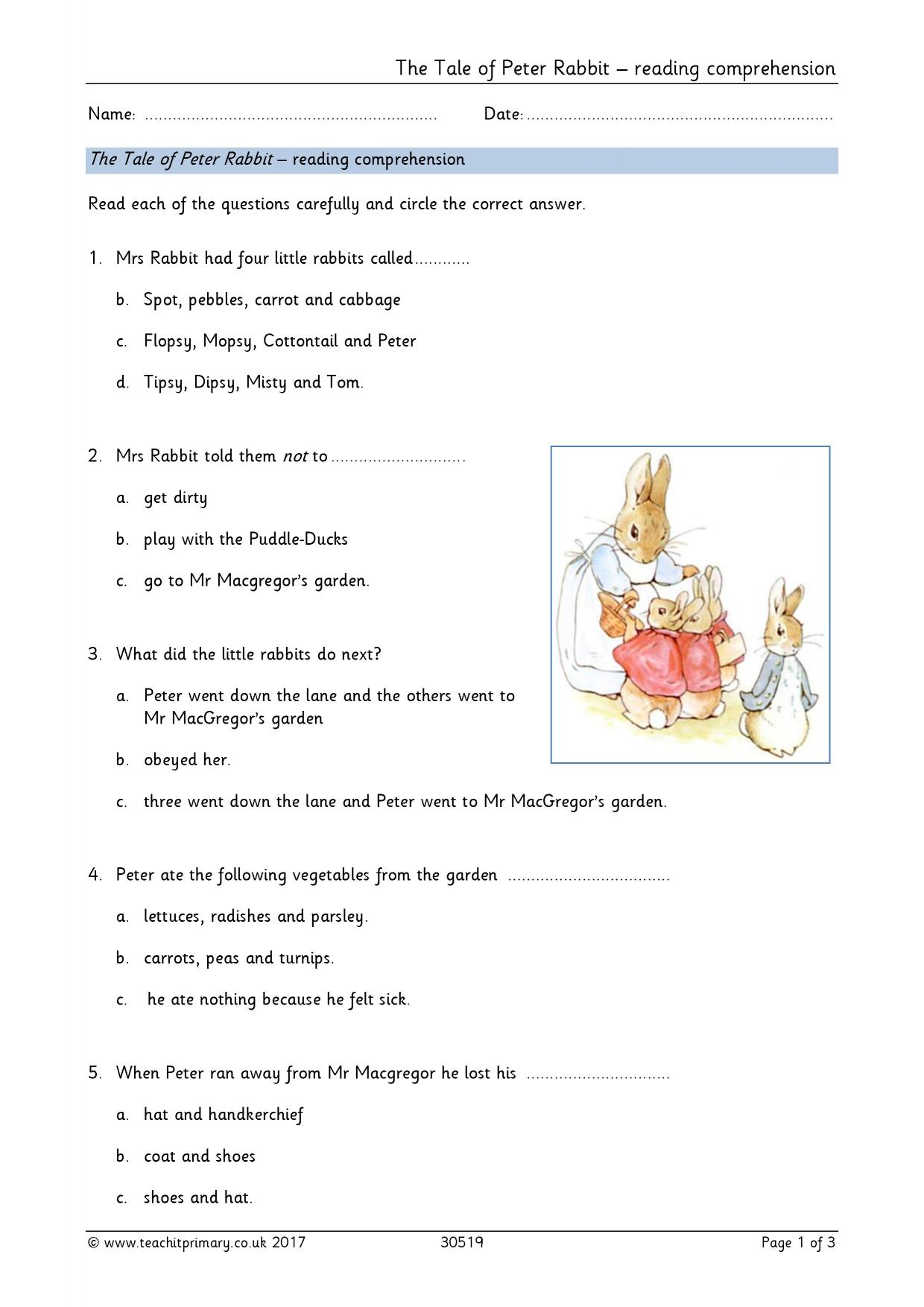 - The Tale Of Peter Rabbit – Comprehension Questions