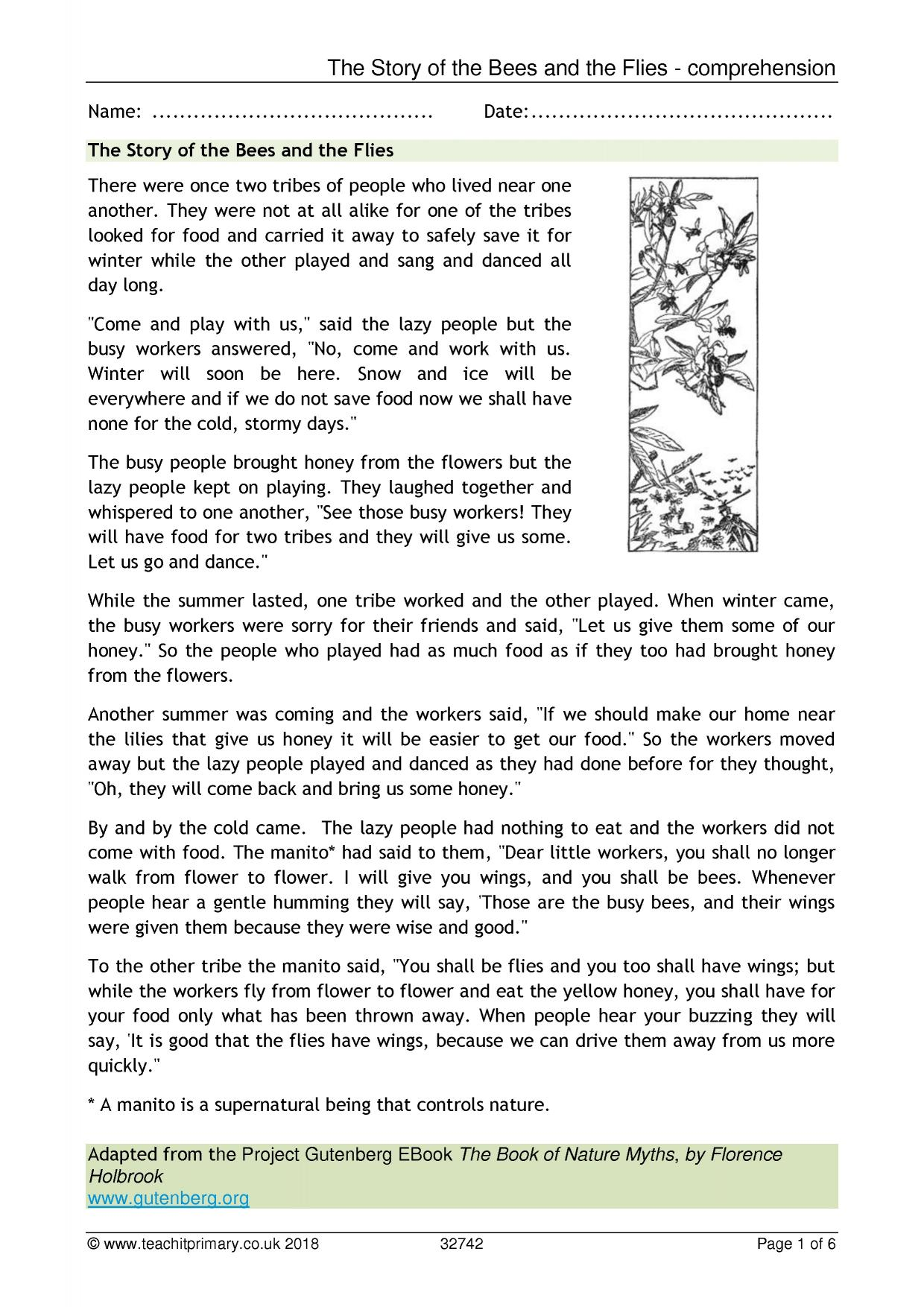 - The Story Of The Bees And The Flies - Comprehension