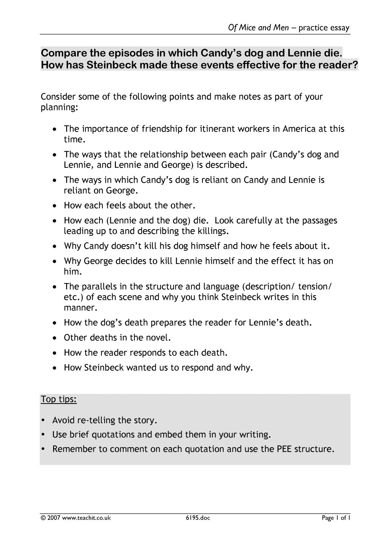 Of mice and men power essay