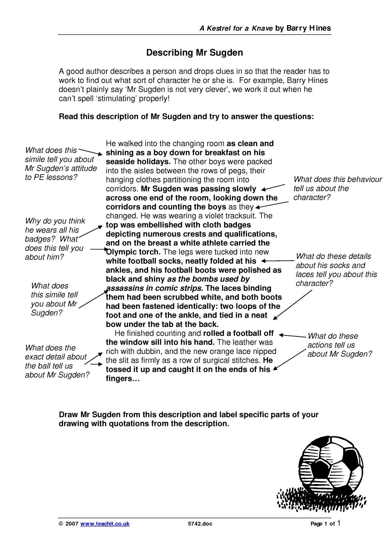 Essay writer needed 5 5